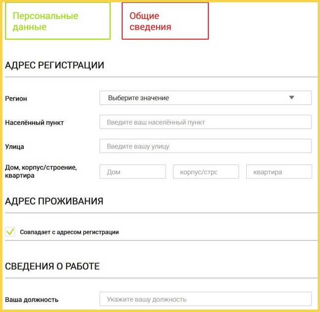 Анкета на займ в Онлайн-Займ - общие сведения